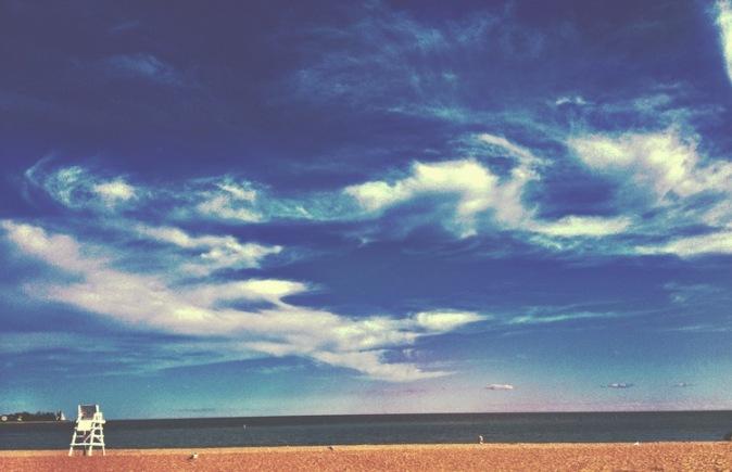 WiseOwlChristine-Beach